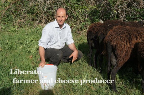 Liberato_farmer and cheese producer